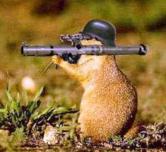 bazooka hamster