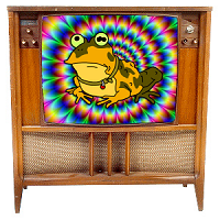 TV Toad