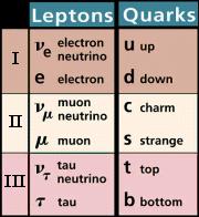fermions