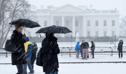 white house snow 2