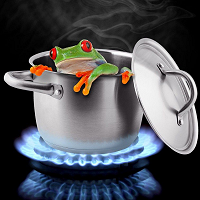 Soon to be boiled frog!