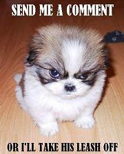 comment pup