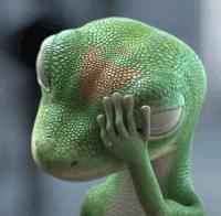 face palm - gecko