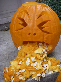 pumpkin-vomit